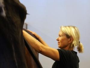 Stort fokus är på hästen som masseras.